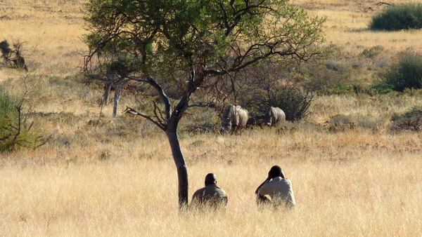 Conservancy Safaris Namibia